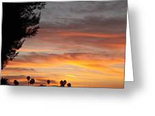 Reflections At The Close Of Day Greeting Card