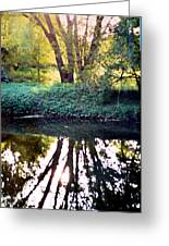 Reflections At Wyeth Greeting Card