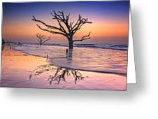Reflections Erased - Botany Bay Greeting Card
