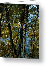 Reflections Fall Greeting Card