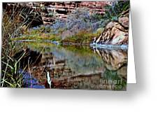Reflections In Desert River Canyon Greeting Card