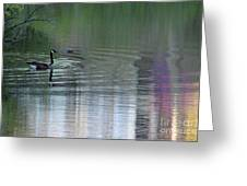 Reflections Of A Canada Goose Greeting Card