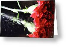 Reflections Of A Carnation Greeting Card