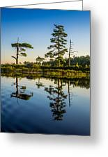 Reflections Of Dawn Greeting Card
