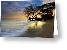 Reflections Of Paradise Greeting Card