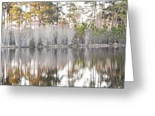 Reflections Of The South Greeting Card