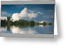 Reflections Of Trees And Clouds Greeting Card