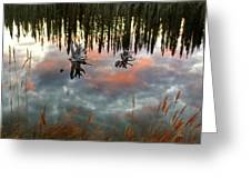 Reflections Off Pond In British Columbia Greeting Card