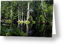 Reflections On The Ocklawaha River  Greeting Card