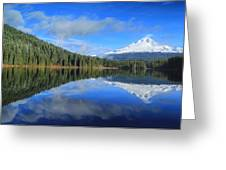 Reflections On Trillium Greeting Card