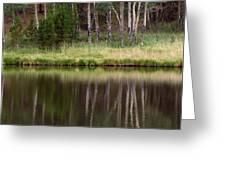 reflections RIV M 2 Greeting Card