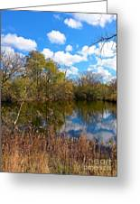 Reflective Cloudy Palatine, Il,  Library Pond Greeting Card