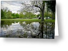 Reflective Field In Spring Greeting Card