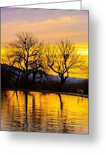 Reflective Pool At Eden Greeting Card
