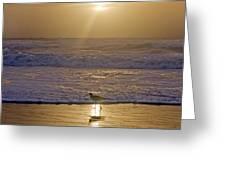Reflective Spotlight  Greeting Card