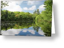 Reflecton On Tranquility Greeting Card