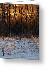 Refracting Snow   Greeting Card