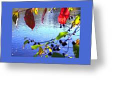 Refreshing View Greeting Card