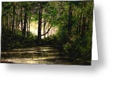 Refuge - Early Morning Greeting Card