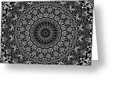 Regalia Black And White No. 4 Greeting Card