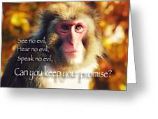 Regulation Of A Monkey Greeting Card