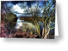 Reifel In Winter 4 Greeting Card
