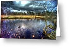 Reifel In Winter 5 Greeting Card