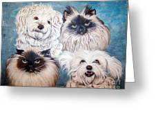 Reigning Cats N Dogs Greeting Card