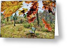 Relax And Watch The Leaves Turn Greeting Card