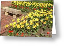 Relaxation In The Garden Greeting Card