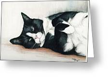 Relaxed Tuxedo Greeting Card