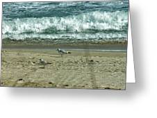 Relaxing By The Ocean Greeting Card