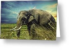 Remember Elephant Greeting Card