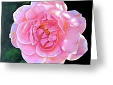 Remembering Frances Greeting Card