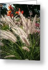 Reptile Garden Plantsi Greeting Card