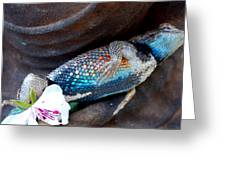 Requiem For A Rainbow Lizard Greeting Card