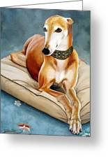 Rescued Greyhound Greeting Card