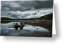 Reservoir Logs Greeting Card