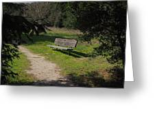 Rest Along The Path Greeting Card