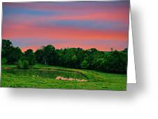 Restful Afternoon Greeting Card by Jan Amiss Photography
