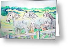Resting Giants Greeting Card
