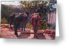 Resting On The Kaibab Trail Greeting Card