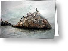 Resting Place - Corona Del Mar Ca Greeting Card