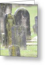 Resting Place In The Rain Greeting Card