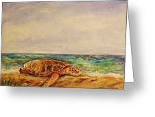 Resting Sea Turtle Greeting Card
