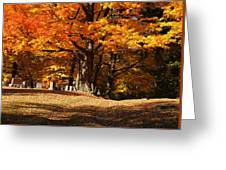 Resting Under Maples Greeting Card