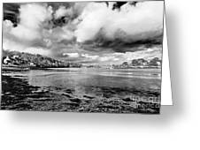 Restronguet Weir In Monochrome Greeting Card