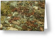 Reticulated Reflection Greeting Card