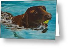 Retriever Play Greeting Card