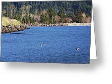 Return To The Bay Greeting Card